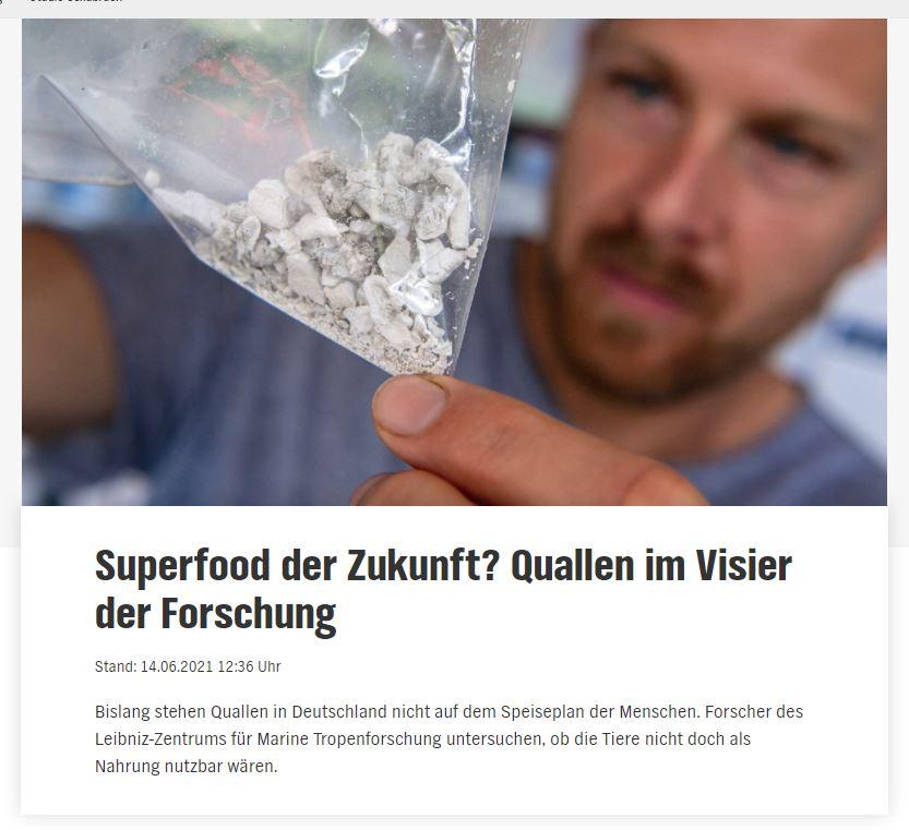 © Screenshot: ndr.de